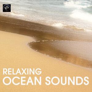 水の音, 波の音 (Ocean Sounds)