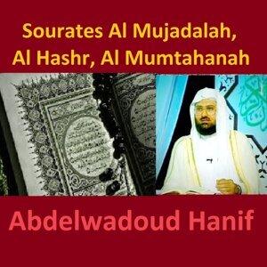 Sourates Al Mujadalah, Al Hashr, Al Mumtahanah - Quran - Coran - Islam