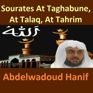 Sourates At Taghabune, At Talaq, At Tahrim - Quran - Coran - Islam