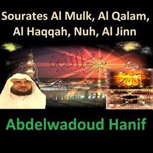 Sourates Al Mulk, Al Qalam, Al Haqqah, Nuh, Al Jinn - Quran - Coran - Islam