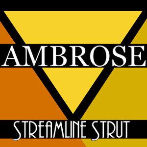 Streamline Strut