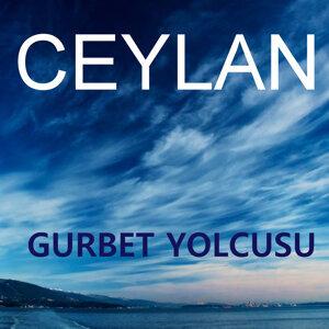 Gurbet Yolcusu