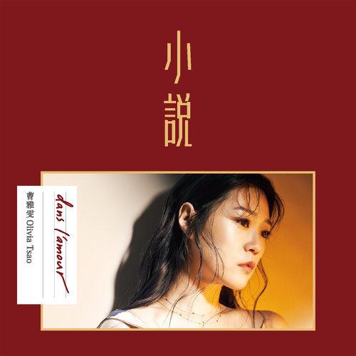 小說 (The Novel)