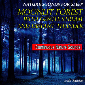 Nature Sounds for Sleep: Moonlit Forest with Gentle Stream and Distant Thunder