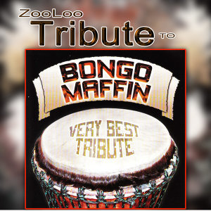 A Tribute to Bongo Maffin - Best Of