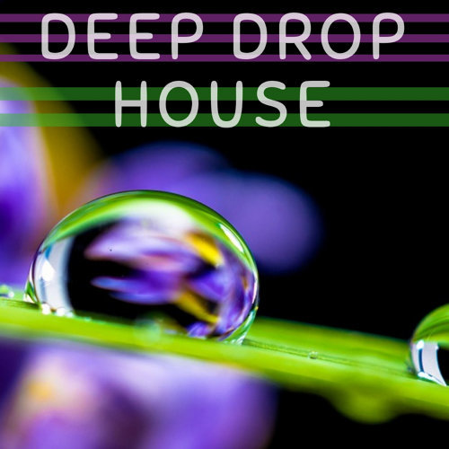 Deep Drop House