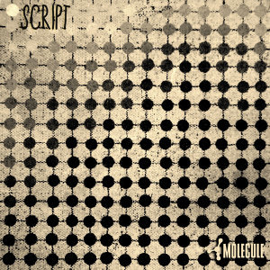 Script.001