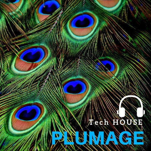Tech House Plumage