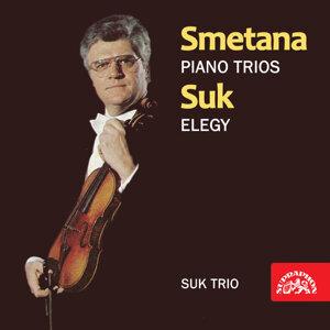 Smetana, Suk: Piano Trios - Elegy