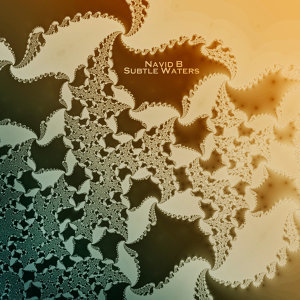 Subtle Waters (Reissue)