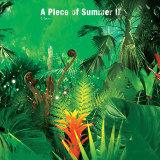 A piece of summer II 夏季練習曲世界巡迴現場錄音