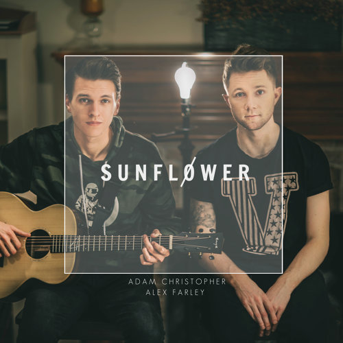Sunflower - Acoustic