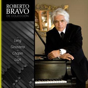 Roberto Bravo de Colección, Vol. 11