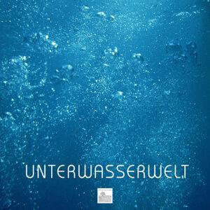 Unterwasserwelt - Unterwasser Nature Entspannungsmusik