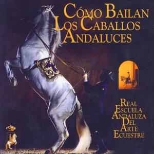 Como Bailan Los Caballos Andaluces (Sinfónia Flamenca)