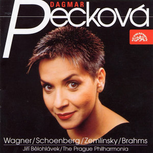Song Recital /Wagner-Schoenberg-Zemlinsky-Brahms/