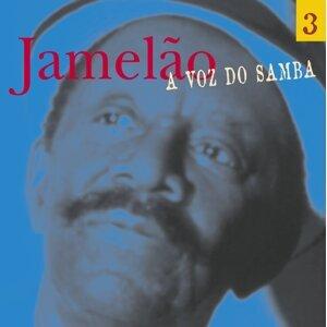 A Voz Do Samba - Disco 03