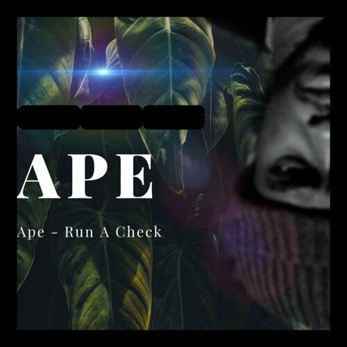 Run a Check