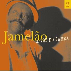 A Voz Do Samba - Disco  02