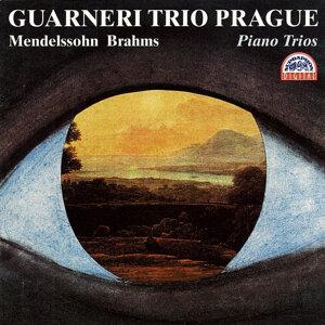Mendelssohn / Brahms : Piano Trios