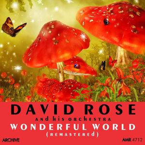 Wonderful World (Remastered)