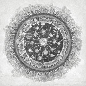 Kosmodynamos