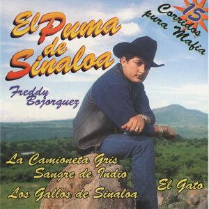 15 Corridos Pura Mafia