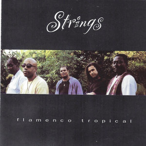 Flamenco Tropical