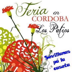"""Feria de Cordoba """"Los Patios"""""""