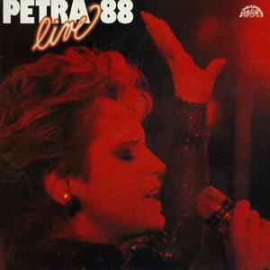 Petra '88 (LIVE)
