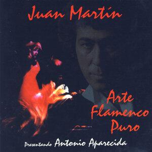 Arte Flamenco Puro