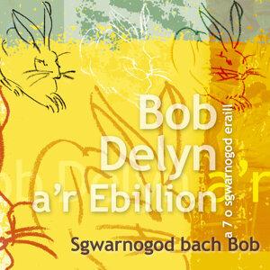Sgwarnogod Bach Bob