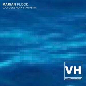 Flood (LoccoGee Rock Star Remix)