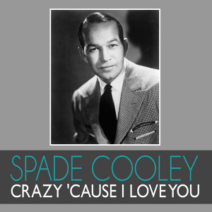 Crazy 'Cause I Love You