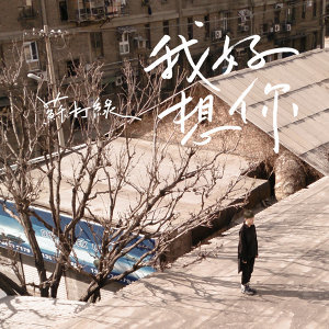 我好想你 (Wo Hao Xiang Ni) - e Single
