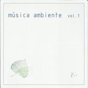 Música Ambiente, Vol. 1