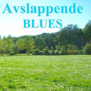Avslappende Blues - Slidegitar