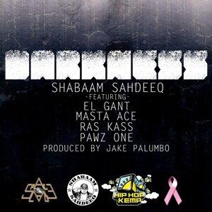 Darkness (feat. El Gant, Masta Ace, Ras Kass & Pawz One)