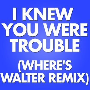 I Knew You Were Trouble - Where's Walter Remix