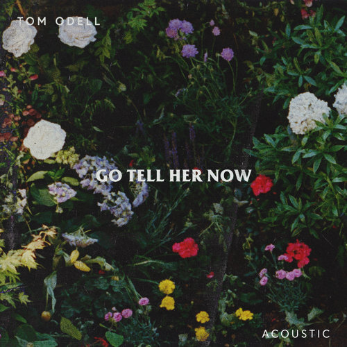 Go Tell Her Now - Acoustic