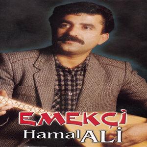 Hamal Ali