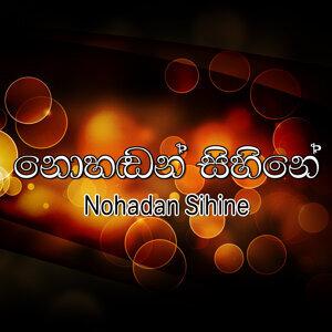 Nohadan Sihine