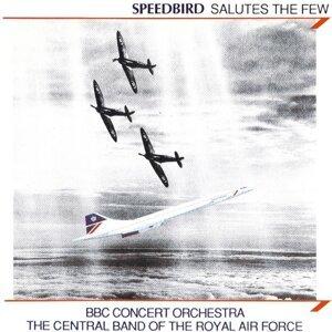 Speedbird Salutes The Few