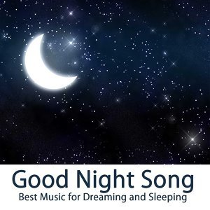 Good Night Song: Best Music for Dreaming and Sleeping, Sleep Music & Relaxation, Piano Music for your Heart, Massage, Relax and Restful Sleep, Solo Piano Meditation, Water Sounds & Instrumental Sleep Songs, Essential Winter Music to Dream