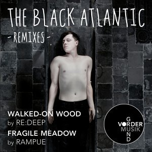 Walked-On Wood / Fragile Meadow - Remixes