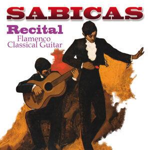 Recital - Flamenco Classical Guitar