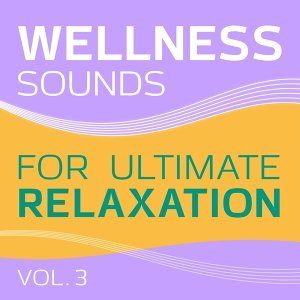 Wellness - Sounds for Ultimate Relaxation, Vol. 3