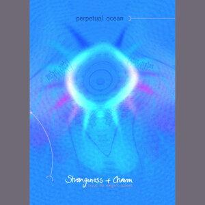 Strangeness + Charm