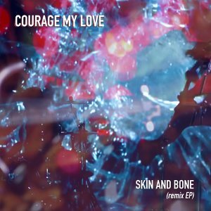 Skin and Bone (Remix EP) - Remix EP