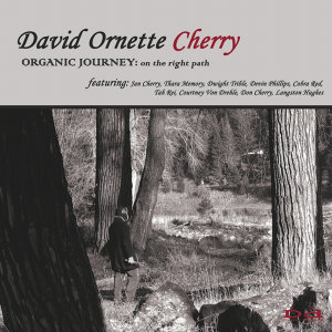 Organic Journey: On the Right Path